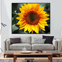 DIY Oil Painting Pictures By Numbers On Canvas Sunflower Waterfall Animal Horse Framed Wall Art For Living Room Home Decoration(China)