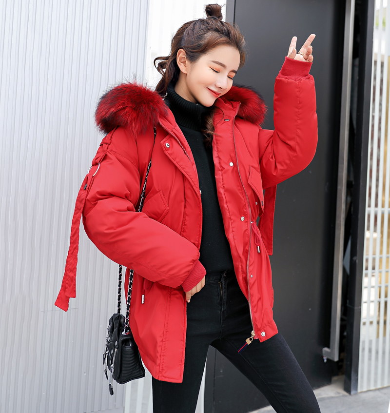 Korean Style 2019 Winter Jacket Women Cotton Padded Hooded With Fur Fe_B8_19