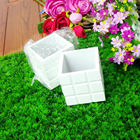 Mini Flower Potted S...