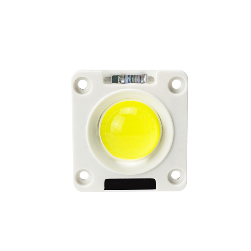 LED Lamp LED COB Chip 20W 30W 50W AC 220V Warm White Day White Cold White Lampada For Flood Light Spotlight DIY Outdoor Lighting