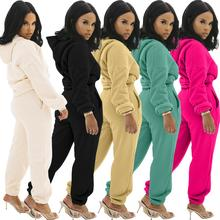 Tracksuits Sweatshirts Hoodie Two-Piece-Set Long-Sleeve Jogging Women Winter Top Fleece