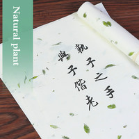 100 Sheets Yunlong Xuan Paper Handmade Letter Paper with Natural Plant Fiber Memo Pads Chinese Traditional Memo Sheet Stationery| |   -