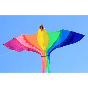 Phoenix Kite With Long Colorfu