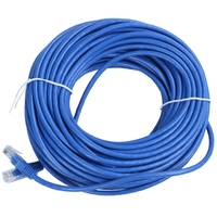 RJ45 이더넷 Cat5 네트워크 케이블 LAN 패치 리드  30m 파란색 1pcs