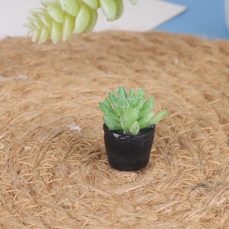 5 Pcs 1:12 Poppenhuis Miniatuur Mini Ingemaakte Succulent Plant Model Accessoires Simulatie Speelgoed
