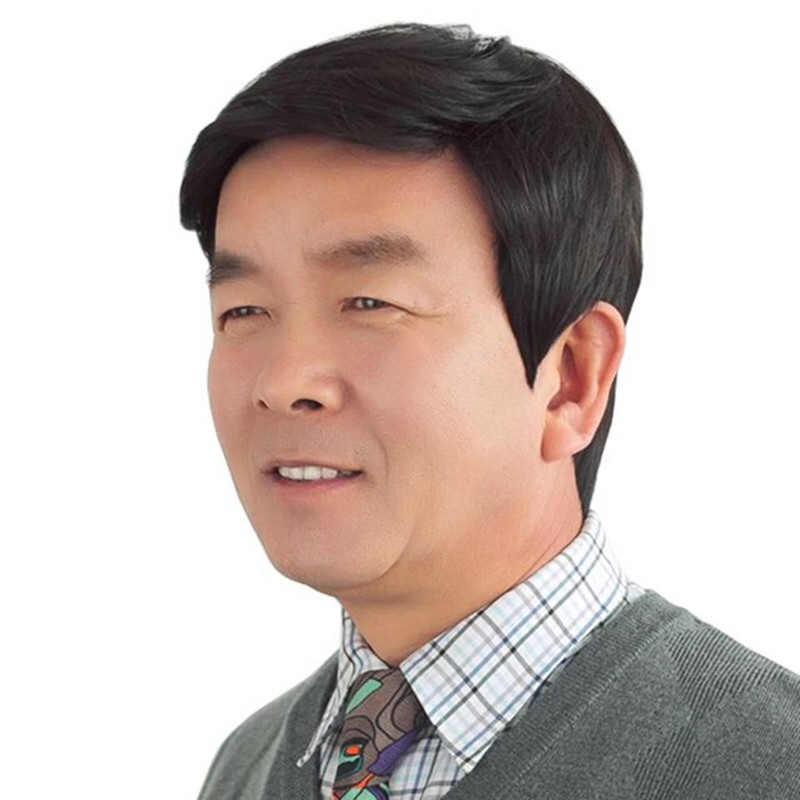 DIFEI peluca sintética de alta temperatura pelo liso corto negro marrón pelucas tejidas a mano para hombres de mediana edad