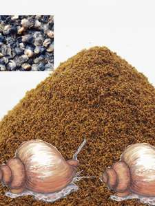 Fishing-Feeder Carp Bait-Product Boillie-Making-Material Additive for 1bag 30g Snail/Silkworm-Flavor