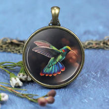 Pretty Hummingbird Necklace Hummingbird Photo Cabochon Glass Pendant Chain Necklace Hummingbird Jewellery Women Valentines Gift(China)