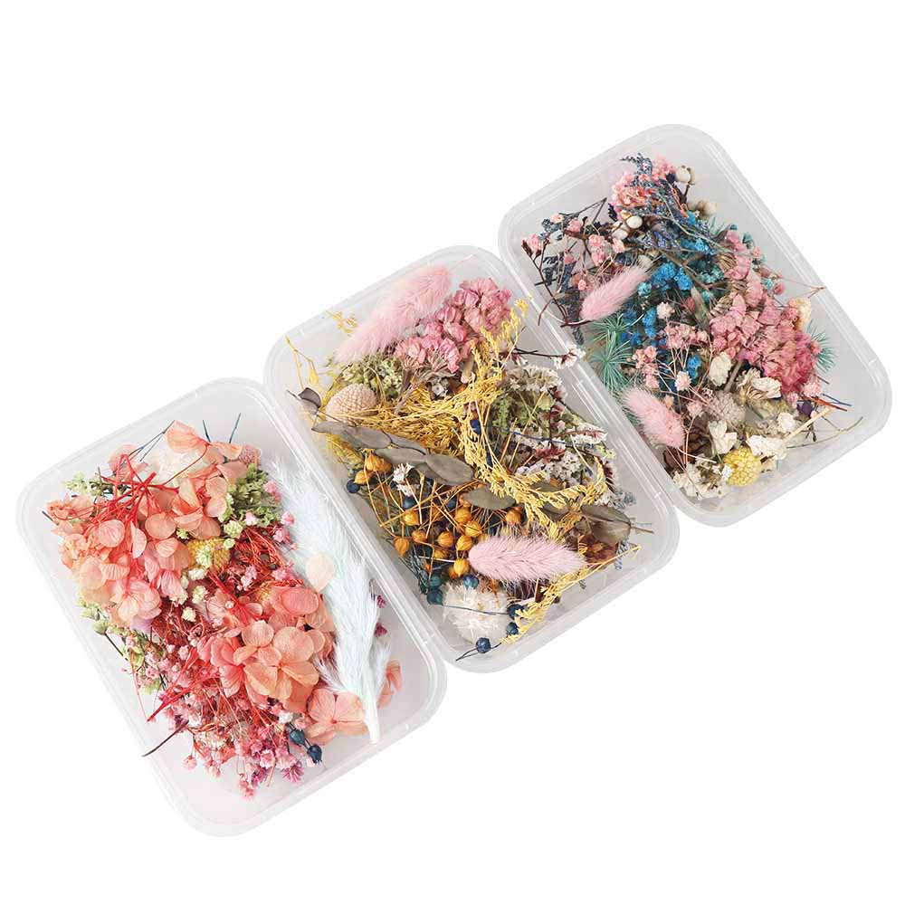 A Box Aromatherapy Floating Flowers Dried Flowers Flower Heads Making Craft DIY Accessories
