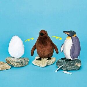 Image 1 - Ewoluujący pingwin Plushie japoński śliczne jaja pisklęta dorosłych pingwiny monety kiesy nadgarstek monety portfel etui kobiety torebka stojak w kształcie karty