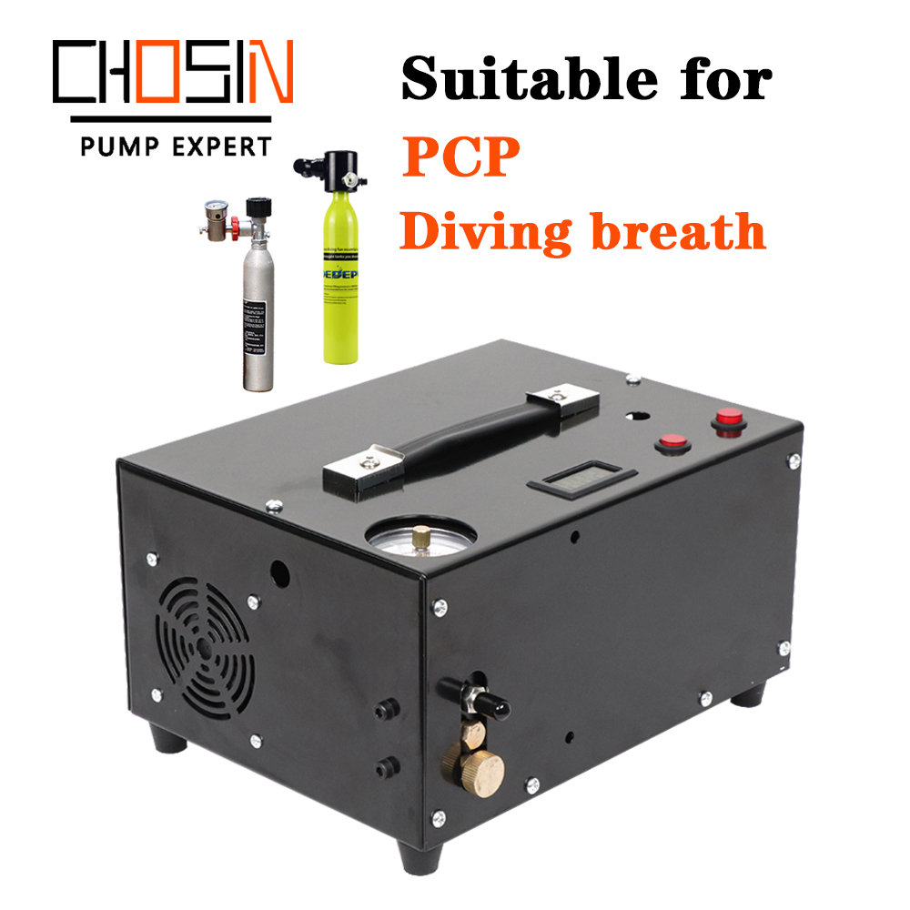 2020 New PCP Air Gun Inflatable  Portable Pcp Air Compressor 12v Mini Scuba Diving Compressor 4500psi 300bar 30mpa 12v/220v/110v