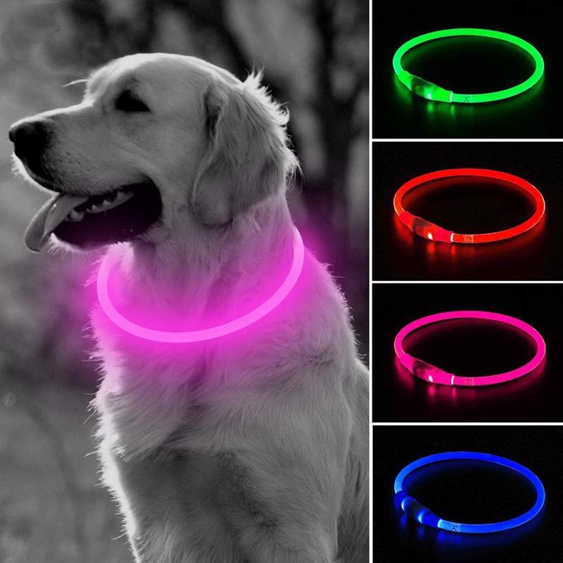 Collar de Seguridad para Perro con luz LED Zeagro
