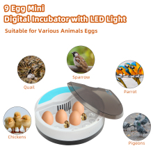 us 【US Warehouse】48-Egg Practical Fully Automatic Poultry Incubator (US Standard) 【US drop shipping】