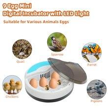 Компактный Автоматический инкубатор для птицы 48 яиц стандарт