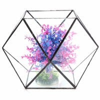 Glass Geometric Terrarium Box Diy Display Box Tabletop Succulent Air Plant Fern Moss Pot Planter