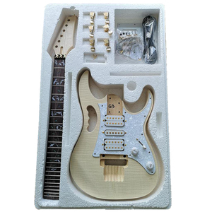 DIY Electric Guitar Kits For E