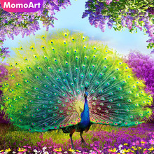 MomoArt Diamond Painting Peacok Full Square Embroidery Diy Mosaic Animal Picture Of Rhinestone