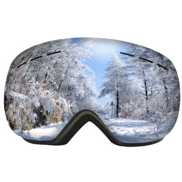 Winter snow snowboard adult ski goggles windproof sandproof large spherical glasses double layer anti-fog ski glasses