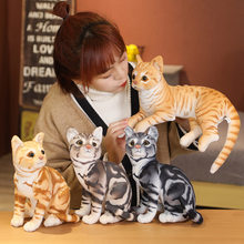 27-36cm simulação americano shorthai & siamese gato pelúcia recheado lifelike boneca animal de estimação brinquedos para crianças decoração de casa presente do bebê