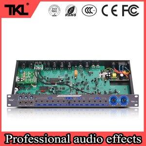Tkl estágio processador de efeitos digitais FBK-10 profissional karaoke sistema de efeitos de controlador de som