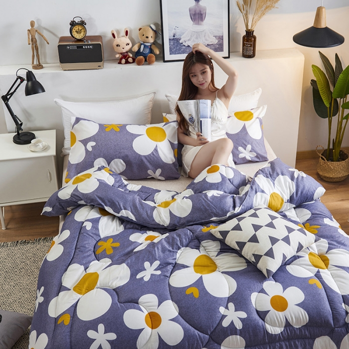 CF2 High Quality Winter 100% Silk Quilt Thickening Warm Quilt Spring Autumn Comforters Luxury Quilt King Queen Twin Full Size