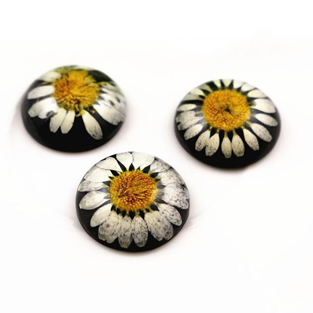 New Fashion 5pcs 25mm Natural Dried Flowers Flat Back Resin Cabochons Cameo  G3-01