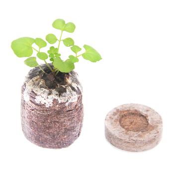 HOT 100 szt Korki rozruchowe sadzonki gleby blok nasion gleby korki rozruszniki TI99 tanie i dobre opinie Plant Food Bryłek Seed 191251