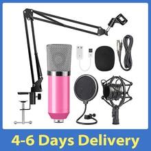 Professional BM700 Condenser Microphone Sound Recording Microphone Mic KTV Singing Studio