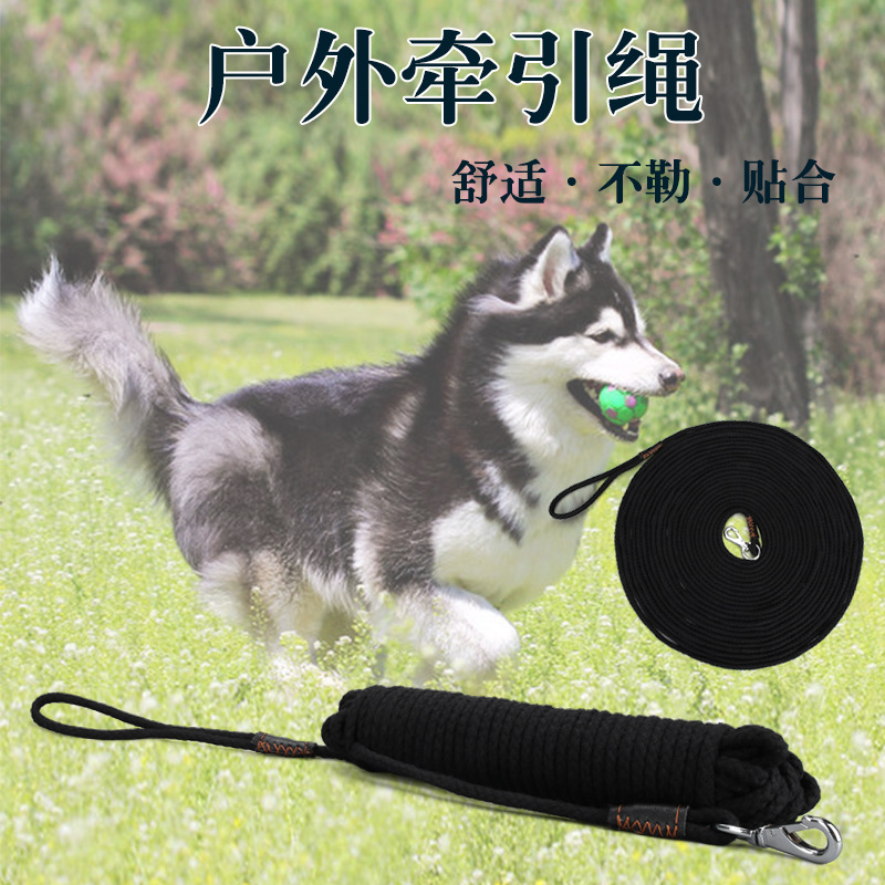 2020 New Products-Pet Dog Nylon Tow Rope Nursing Dog Lengthen Supplies