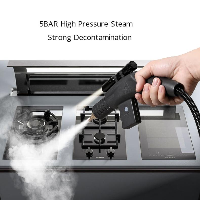 Steam Cleaner Kitchen Disinfection High Temperature Steam Cleaner for Air conditioner Hood Sterilization Anti- Coronavirus 110V 6