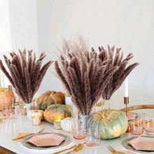 15 pçs dekoration pequeno reed natural seco pequeno pampas grama phragmites artificial plantas de casamento ramo de flores para decoração de casa