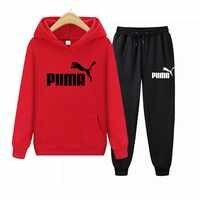2020 Casual Tracksuit Women 2 Piece Set Female Hooded Sweatshirt And Pants Sportwear Suit Zipper Hoodies Clothes Ropa De Mujer