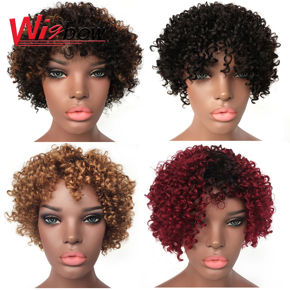 Free Shipping Wholesale Human Hair Curly Lace Wig Brazilian Human Hair Wigs For Black Women Cheap Wholesale Machine Made Wig