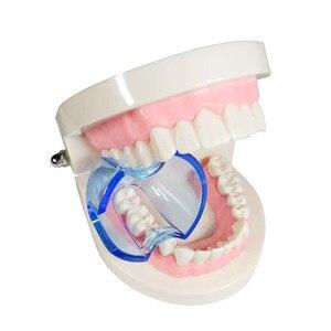 Image 3 - Lote de 20 unidades de Retractor Dental Autoclavable, expansor de mejillas, abridor de boca para dientes posteriores, color azul