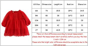 Image 5 - Bebê meninas vestido de renda tule bordado lanterna manga festa princesa vestido crianças roupas para a criança 0 2y