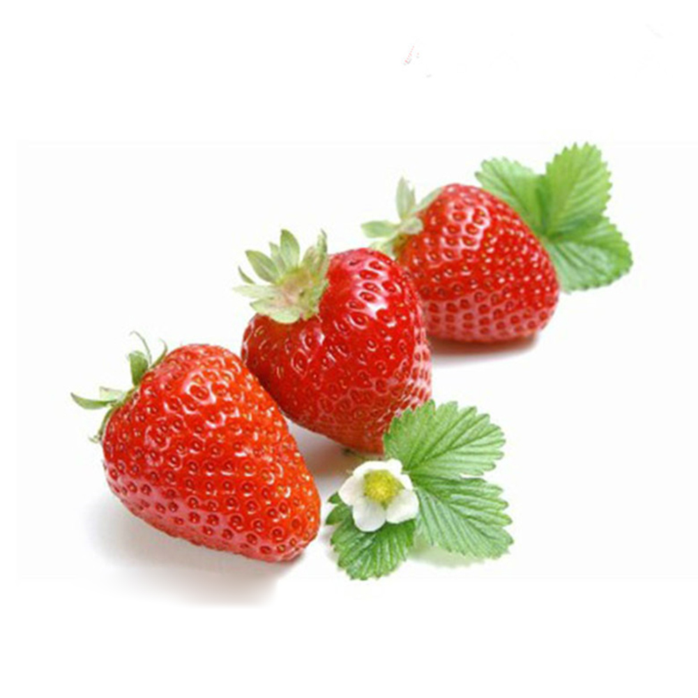 100pcs Strawberry Seeds Sower Delicious Fruit Grow Seedling Garden Supplies