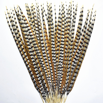 Natural Rare Pheasant Tail Feathers for Crafts 4-72inch Reeves Venery Pheasant Tail Feather Carnival Costumes Decoration Plumas 10pcs lot natural ringneck pheasant tail feathers for crafts 25 75cm 10 30 wedding decorations pheasant feather plumes plumas
