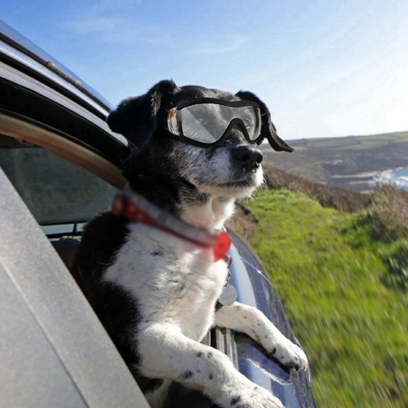 Fashion Pet Dog glasses medium Large Dog pet glasses Pet eyewear waterproof Dog Protection Goggles UV Sunglasses