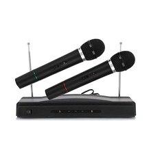 AT-306 karaoké professionnel double système de Microphone portable sans fil maison KTV