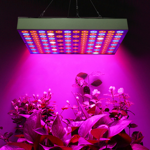 LED Grow Light Phyto Lamp Full Spectrum Plant Light Fitolampy 25W 45W Grow Lamp for Plants Indoor Veg Flower Seeds Growing Lamps