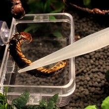 18cm Mini Reptil Pinzette Noctilucence Clip Fütterung Zangen Live Lebensmittel Fütterung Clamp