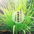 Rosa orgánica hierba aceite esencial 10ml cara hidratante equilibrio de agua de aceite de cuerpo y mente mantenimiento esencial unilateral de aceite