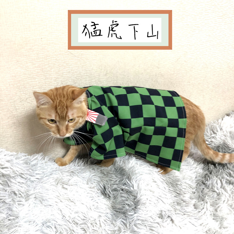 Demon Slayer Kimetsu No Yaiba Cats Kamado Tanjirou Cosplay Cape Costumes Full Sets Agatsuma Zenitsu Orange Cape Suits Costumes