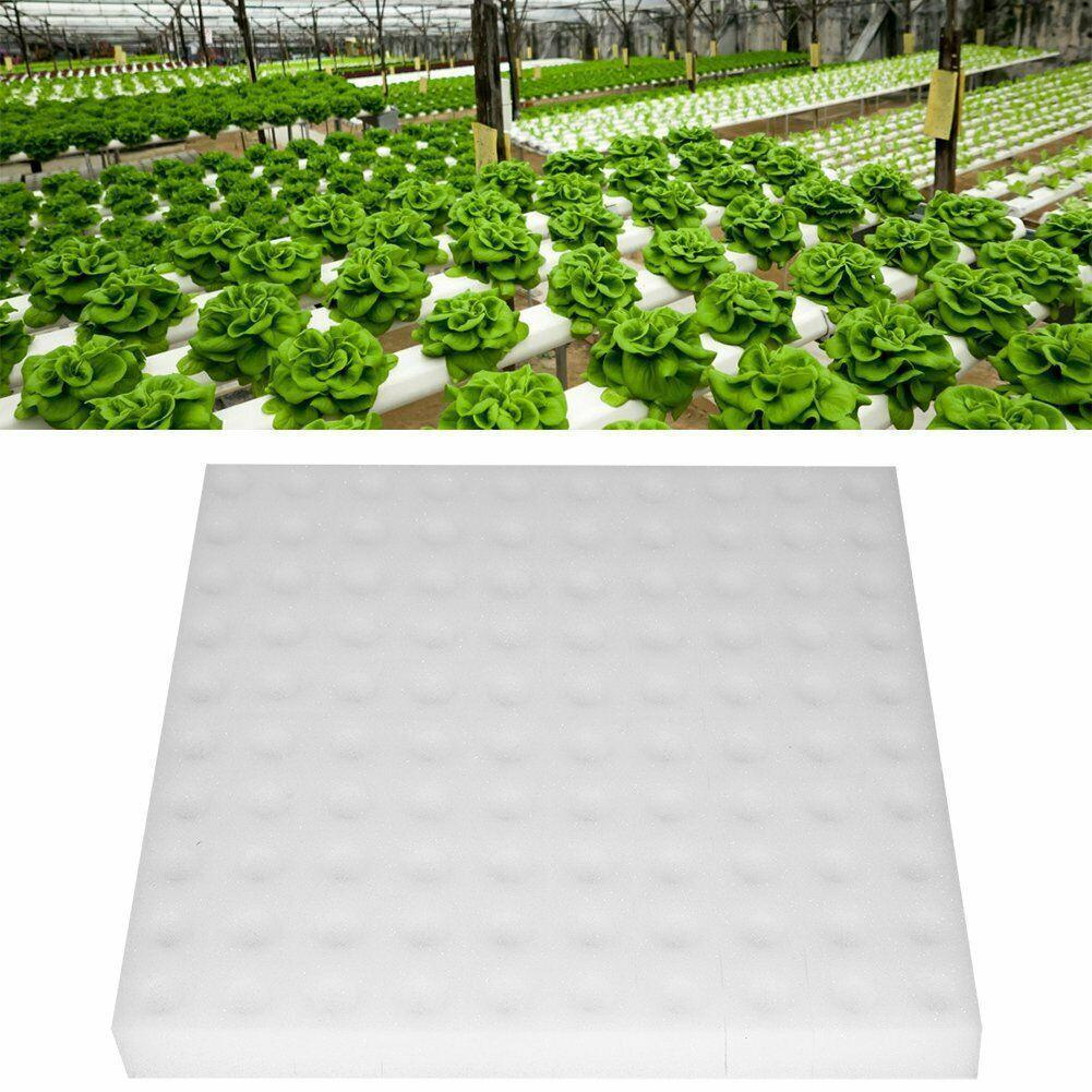 2019 100 Pcs Transplanted Sponge Soilless Hydroponic System Cultivation Gardening Tools Vegetable Seedlings For Planting G1A7