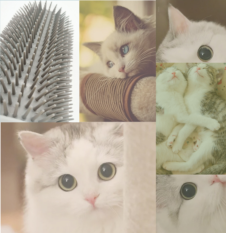 Pet Product For Cat Self Groomer Wall Brush Corner Cat Massage Self Groomer Comb Brush With Catnip Cat Rubs with a Tickling Comb 4