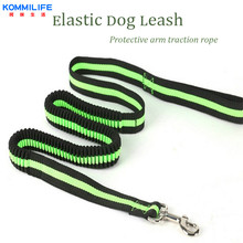 1.2m Long Nylon Elastic Traction Rope  Dog Leash with Comfortable Padded Handle Suitable for Small and Medium Size Dogs