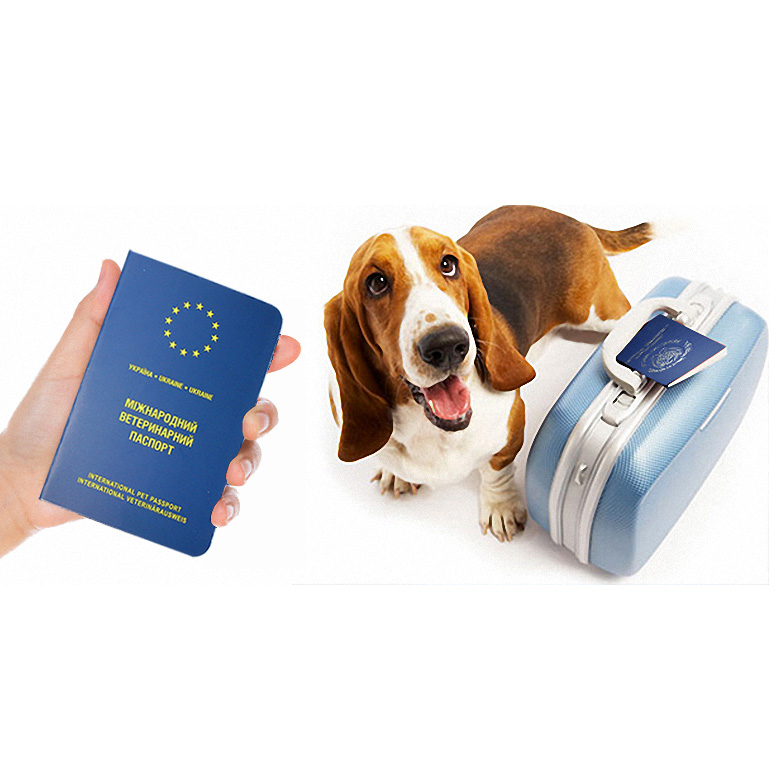 Travel Accessories Pets Products  Pet Passport Cover European Cover Passport For Pet Dog Cat