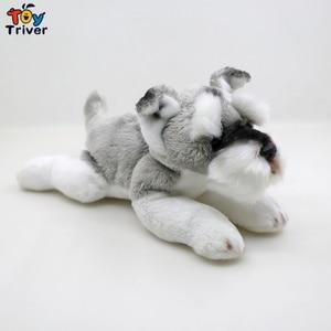 Image 5 - Wolf Maltese Husky Puppy Labrador Saint Bernard Pomeranian Schnauzer Bichon Tibetan Mastiff Dog Plush Toy Stuffed Animals Doll
