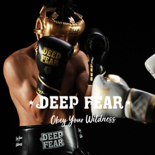 DF профессиональный бокс саньда боксерский шлем полная защита для защиты носа свободный боевой луч Полнолицевой шлем