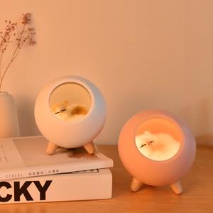 Bonita lámpara LED de noche con atenuación táctil para casa de gato con USB, moderna lámpara de regalo creativa para niños, dormitorio, hogar, estudio interior y mesita de noche